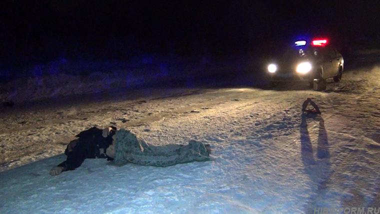 В аварии под Кировском погиб неизвестный полуодетый пешеход