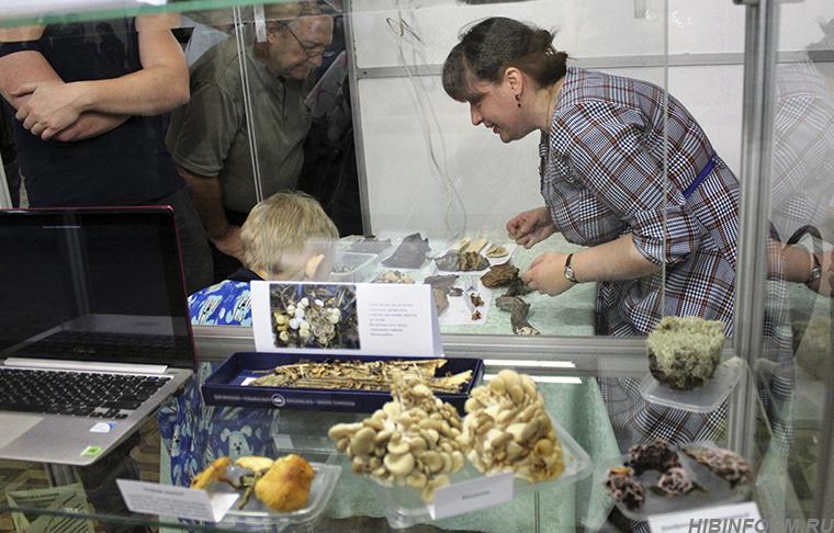 Праздник любознательных. Апатиты влились во всероссийский фестиваль «Nauka 0+»