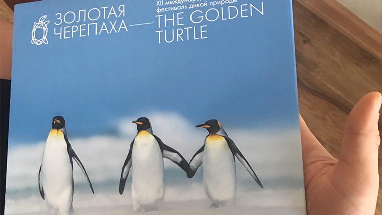 Наш пейзажист Виталий Истомин стал серебряным призёром «The Golden Turtle»